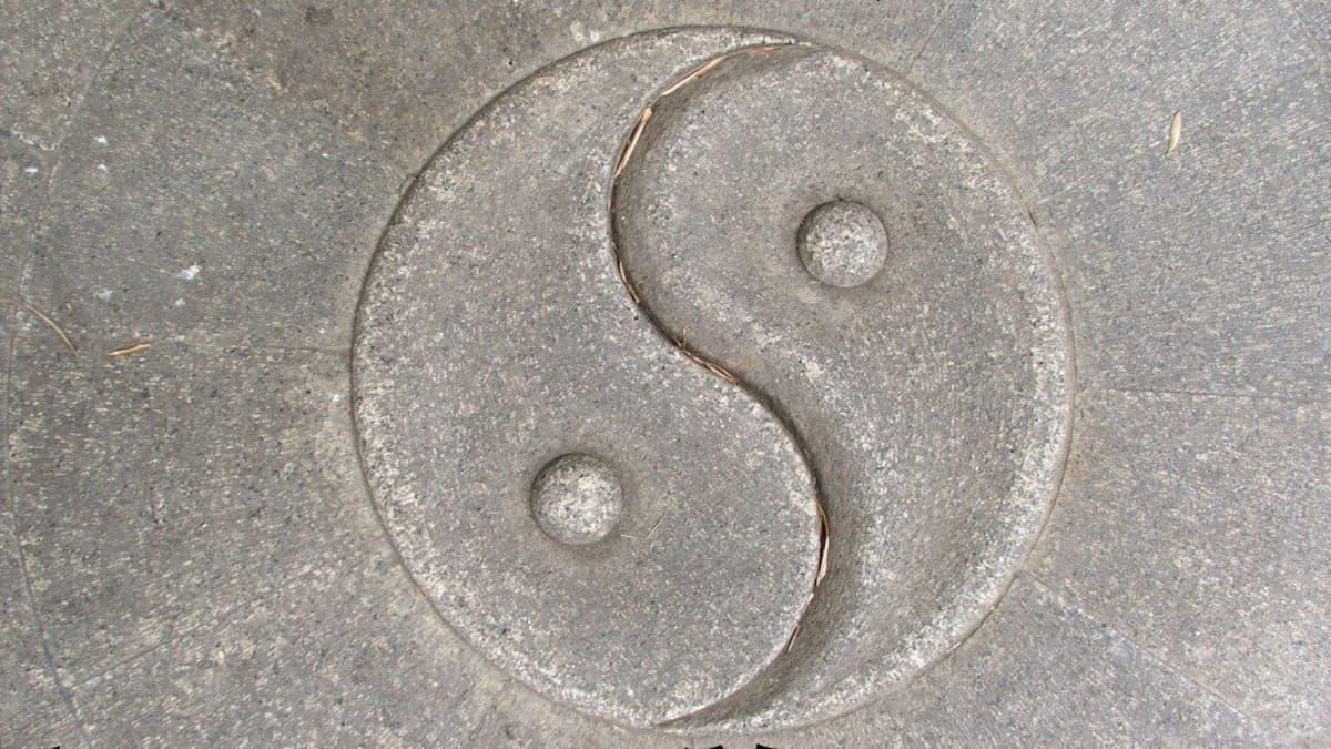 Meaning yin tattoo yang symbol 9 Surprising