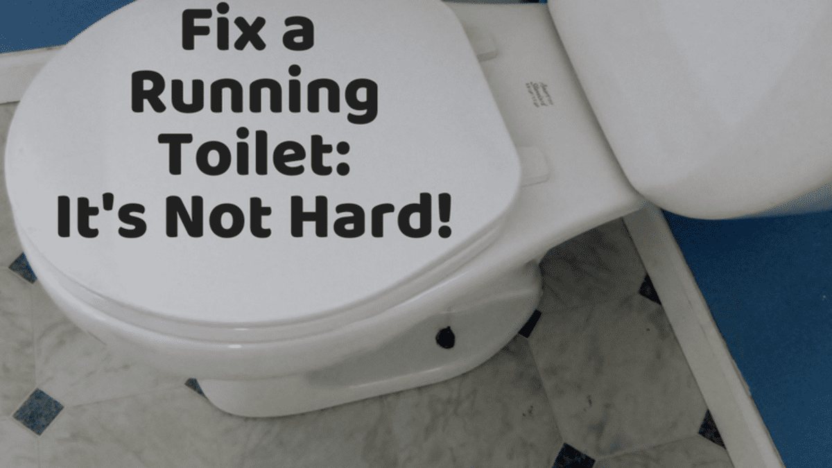 Toilet Repair How To Fix A Leaking Or Running Dengarden