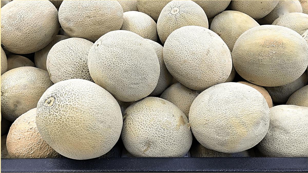 How To Pick The Perfect Sweet Cantaloupe 6 Tips Delishably Food And Drink Mukmelon ete un fruct dulce, aromat, cunocut pentru carnea a vibrantă și veratilitatea culinară.în plu față de aroma a unică, mucanul oferă o multitudine de nutrienți importanți și a fot aociat c. to pick the perfect sweet cantaloupe