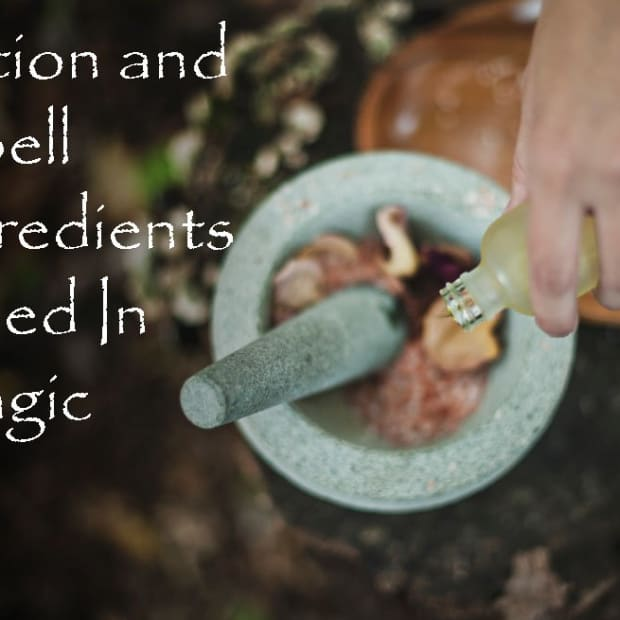 potion-and-spell-ingredients