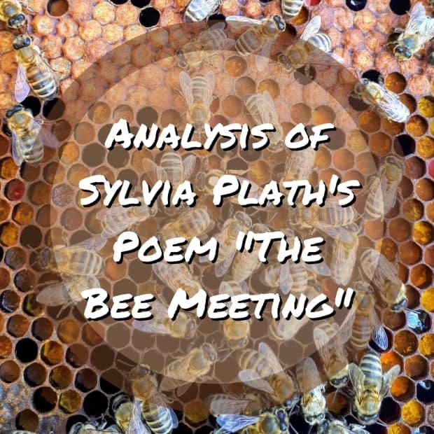诗歌分析 - 蜜蜂会议 - 逐步 - 普拉斯 - 普拉斯