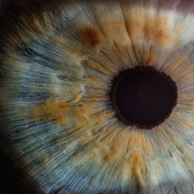 人类眼睛的特写