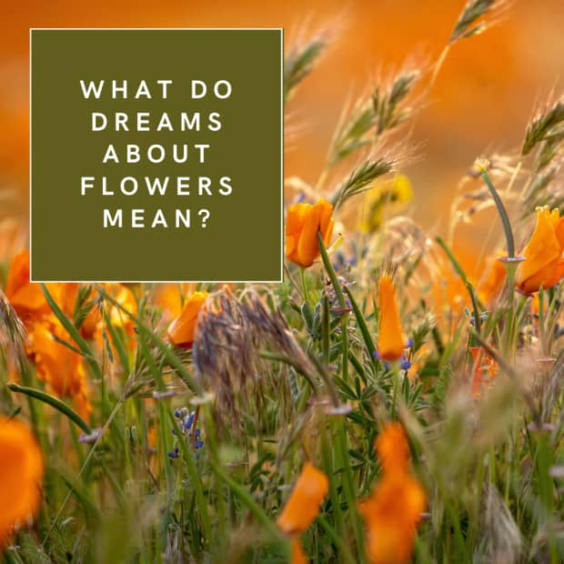 What do dreams about flowers mean