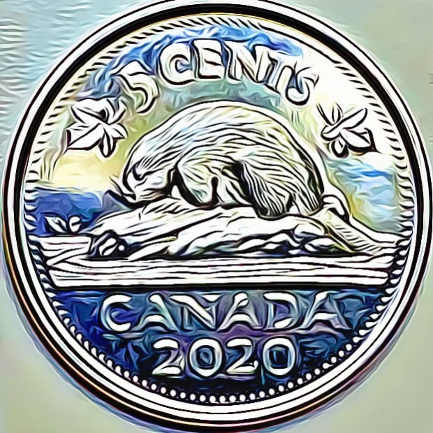 canadian-cashier-nickel-scammers