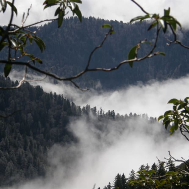 a-hikers-tour-of-mount-leconte-in-the-great-smokey-mountains