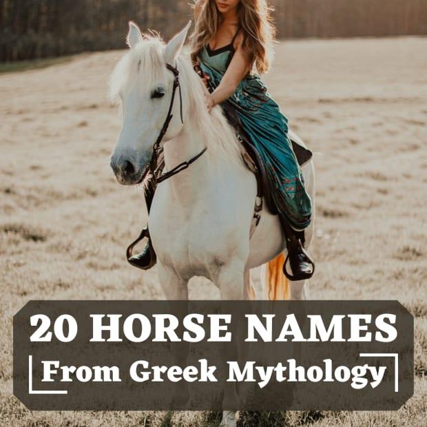 20-names-for-horses-from-greek-mythology