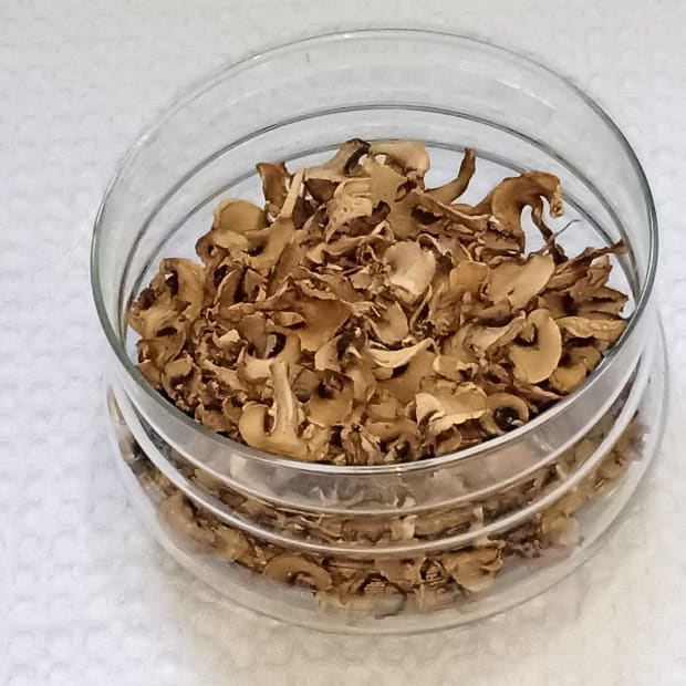 why-and-how-to-sun-dry-mushrooms-and-store-them-for-a-long-time