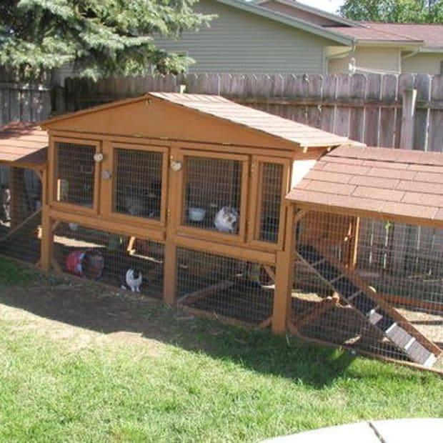 A good sized bunny hutch from http://www.bobvila.com/MyProjects/Rabbit_Condo_Bunny_Hutch-P4475.html