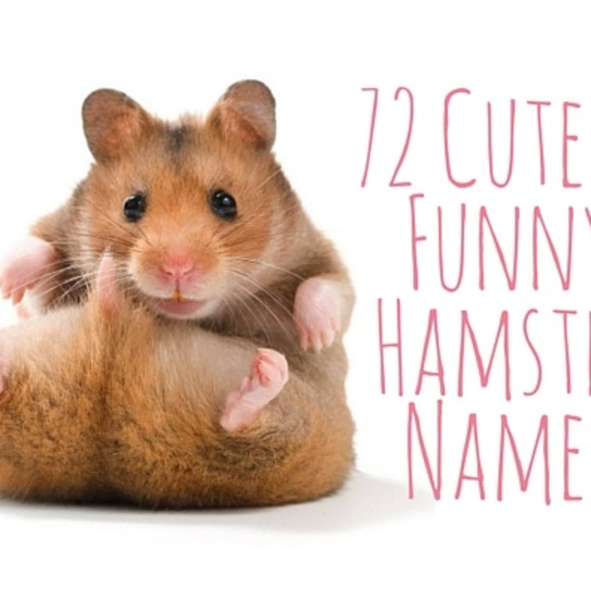Sweet names to call a boy