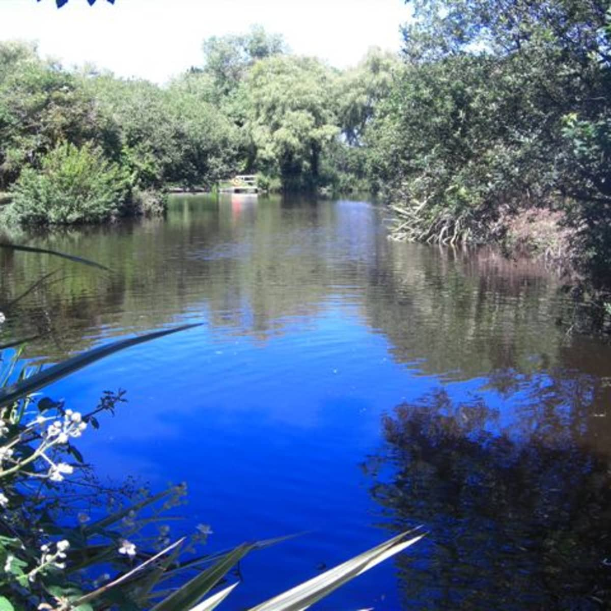How To Build An Artificial Fishing Lake Dengarden Home And Garden