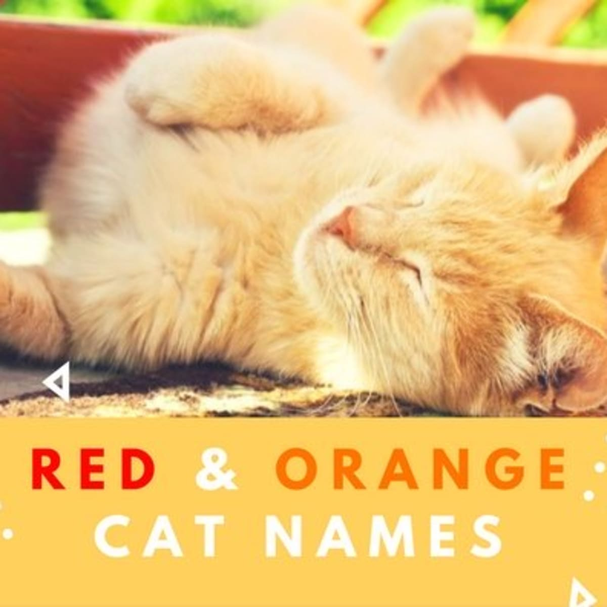60 Badass Names For Red Or Orange Cats Pethelpful By Fellow Animal Lovers And Experts