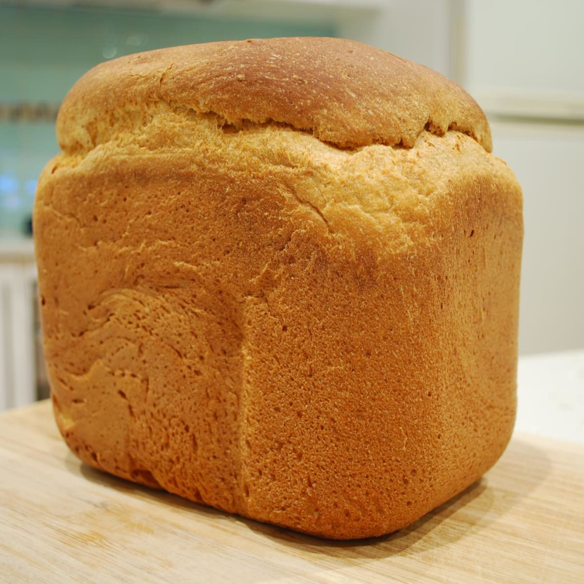 Hamilton Beach Dough And Bread Maker Pros And Cons For Gluten Free Baking Delishably Food And Drink