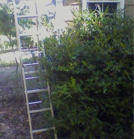 Ladder—WRONG!