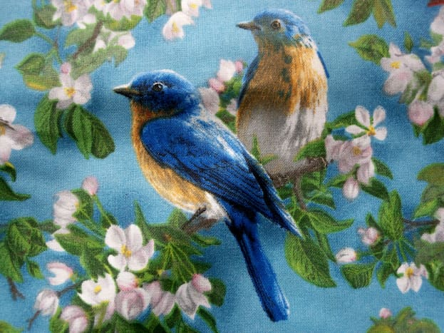 Close-up of bird print fabric.