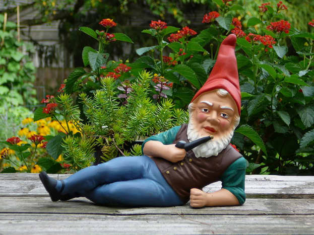 German garden gnome.