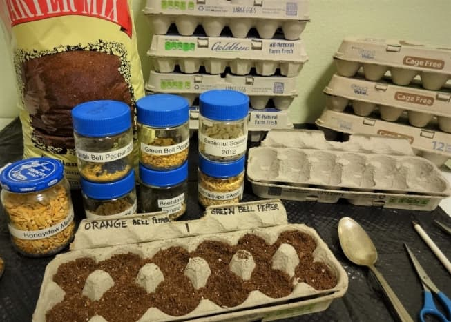 Start by setting aside egg cartons for seed starting pots.