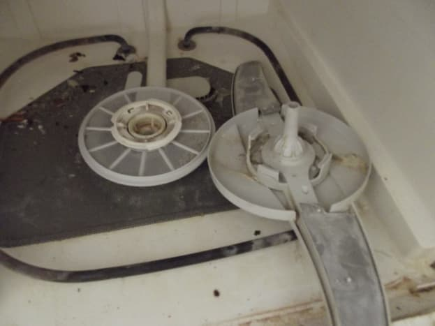 What's hiding underneath the sprayer in your dishwasher?