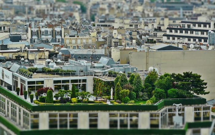 Roof gardens are sustainable and keep buildings cooler in summer.