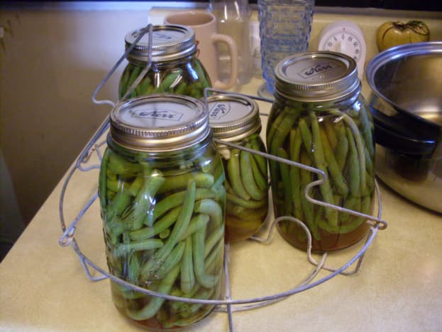 As you are finished with each jar, place it in a canning rack. You can warm your jars, and minimize damage to them, by locking your rack over the canner with the handles. This is all the beans I did in this batch.