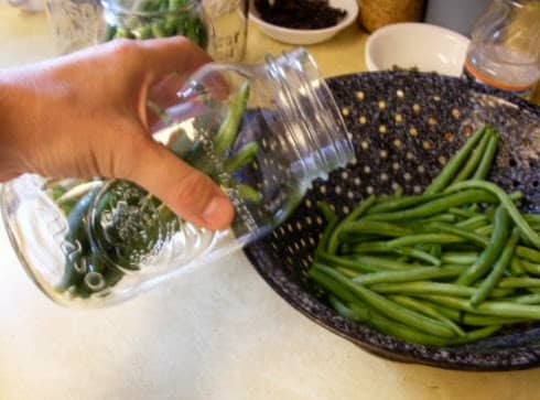 Lay the beans in close together. If you have broken them in pieces, you may wish to use a large-mouth funnel to help get them in the jars.