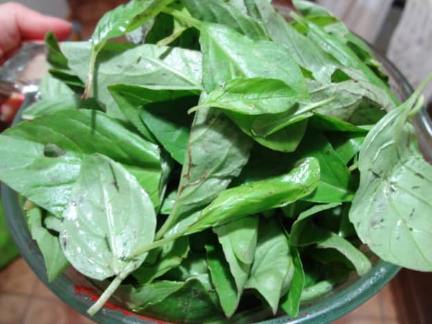 Basil leaves, 4 cups packed