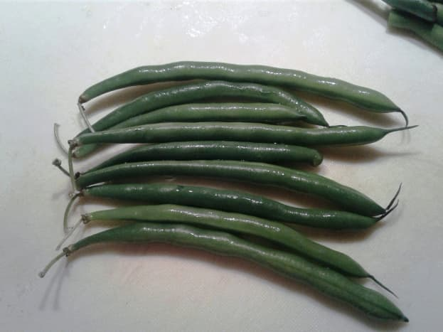 Here are the beans. Line them up, stem ends at one side. Slice off the stem then chop them in half (or in three pieces if yours are long).