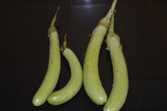 Long green eggplants or brinjal