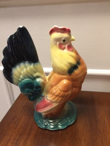 """Royal Copley hen with rebuilt beak. No """"before"""" picture is available."""