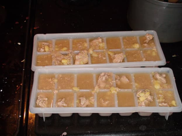 Ready for the freezer!