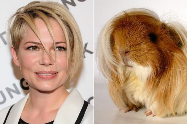 Michelle Williams - the guinea pig and her lookalike.