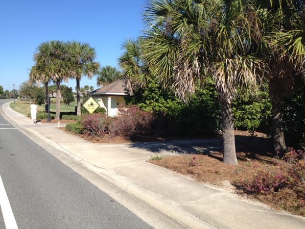 A typical scene in The Villages: palm trees and sunny streets.  Many people find the development idyllic and believe that the advantages vastly outnumber the disadvantages, but others are more critical.