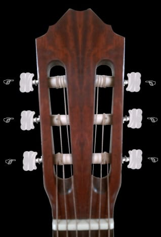 Locate the nuts at the headstock of your guitar...