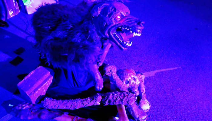 This sinister dog creature surprised me at the haunted house in the National Museum of Funeral History.
