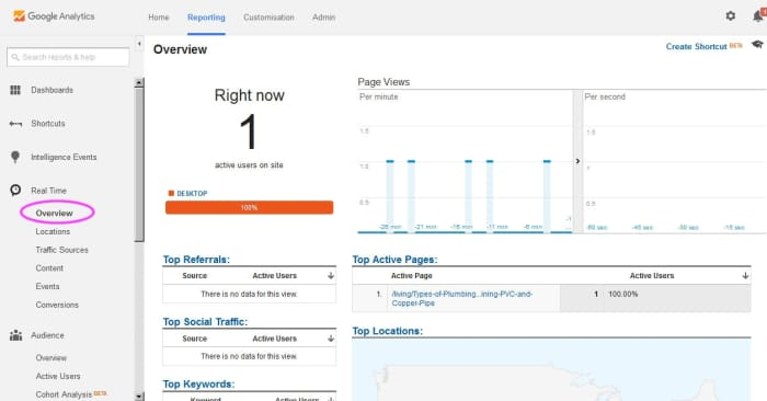 """Google Analytics Real Time shows instant, real time info about visitors to your site. Select """"real time"""" and then one of the sub menu items. """"Overview"""" gives general information"""