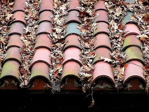 Old roof tiles (Morguefile free license).