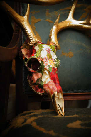 A decoupaged deer skull with gold leaf antlers.