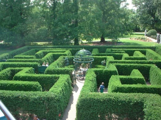 The maze at the St. Louis botanical gardens