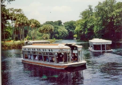 One can view the springs, fish plants, etc. through these glass bottomed boats at Silver Springs, Florida
