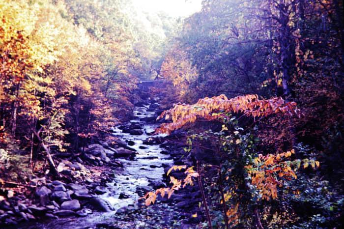 Little Pigeon River in Gatlinburg, Tennessee