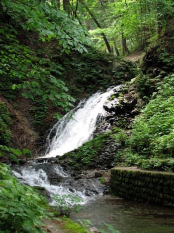 Shiraito falls in summer.