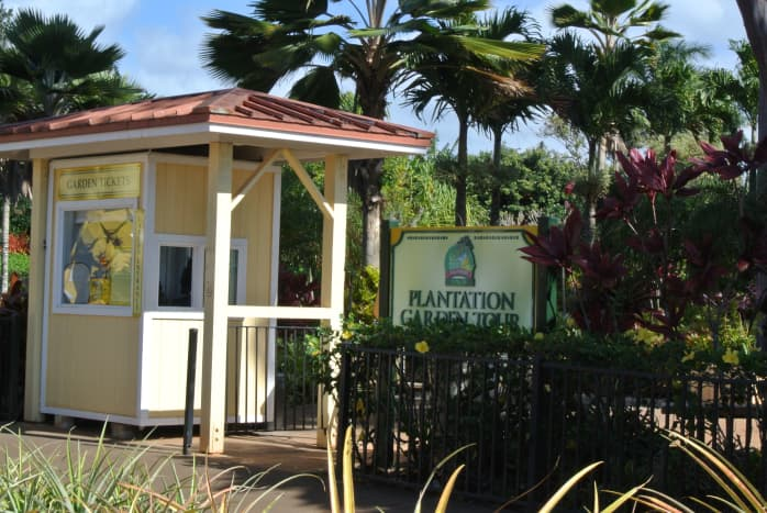 Botanical Garden Tour at the Dole Plantation