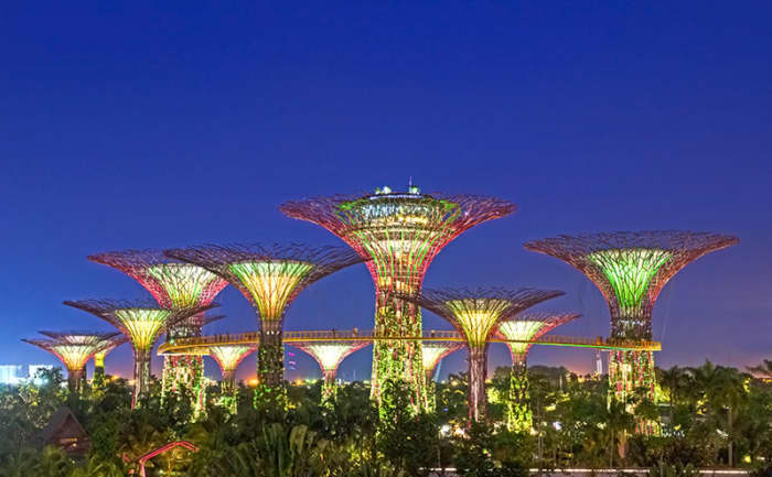 The Super Trees of Singapore's Gardens by the Bay. The city state's most iconic attraction at the moment.