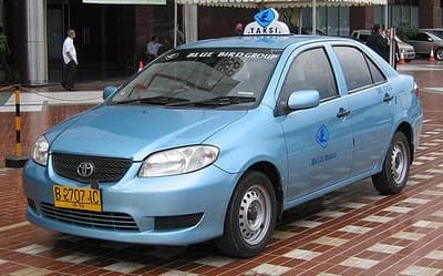 Look for genuine Bluebird Taxis for the safest ride.
