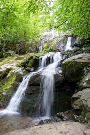 Dark Hollows Falls at Shenandoah National Park