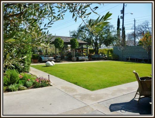 The lawn at Tiny Boxwoods