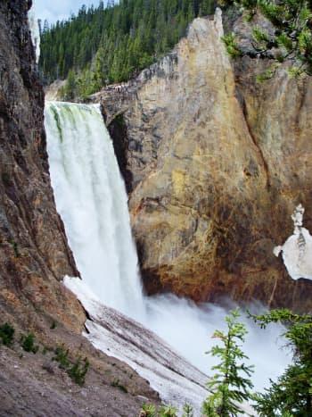 Lower Yellowstone Falls at Yellowstone National Park
