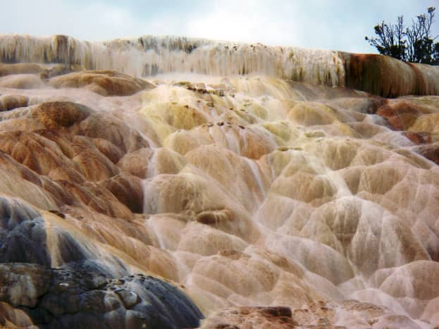 Mammoth Hot Springs near the North Entrance in Yellowstone National Park