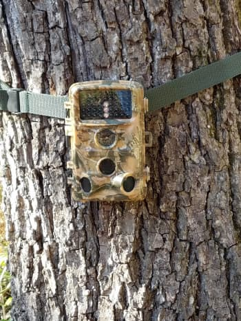 Campark T45 Hunting Camera