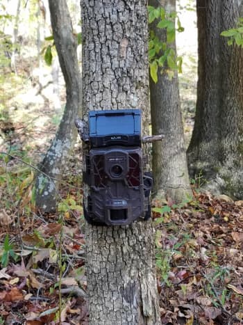 Spypoint Solar-W Trail Camera