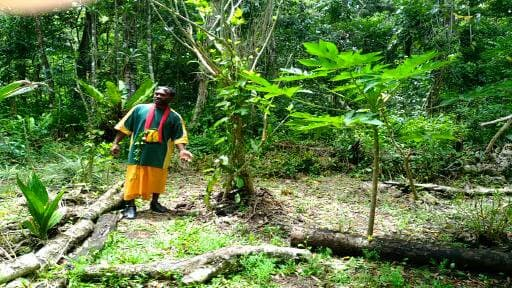 Eddy, our Rain forest guide